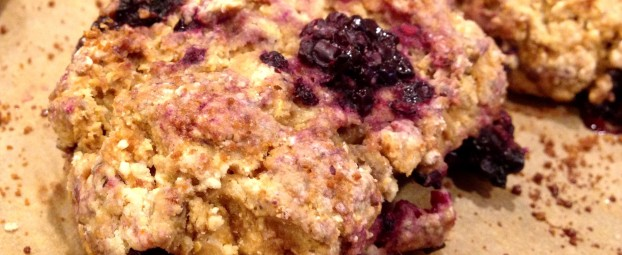 Wild Blackberry Lemon Zest Scones (& the Glycemic Index)