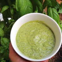 Pesto Everything: Raw, Nut-free & With/Without Garlic