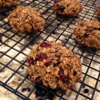 Anytime Or Anywhere Oatmeal Cranberry Cookies